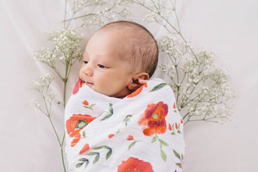 Picture for category Cotton Muslin Swaddles